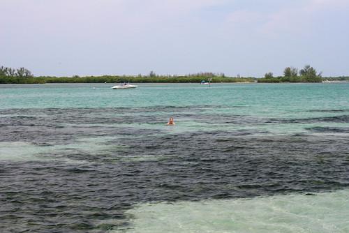 Rox-in-Lagoon