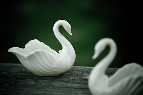 {235/365} Lenox swans