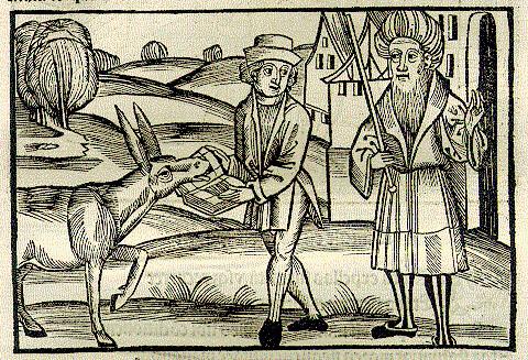 Grammaticus et Asinus