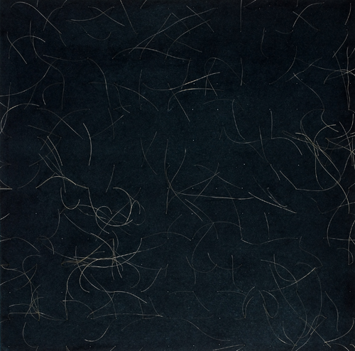 Etching and hair. Print area 30x30cm. Nicci Haynes 2009