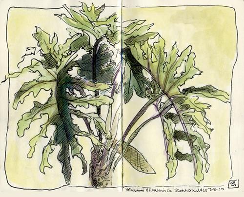 Sketch crawl 28: tree