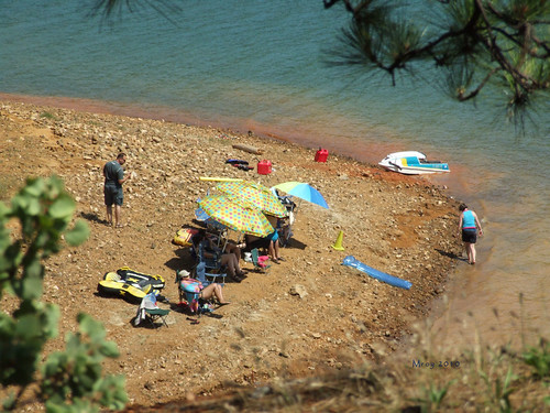Summer Day In Lake Shasta