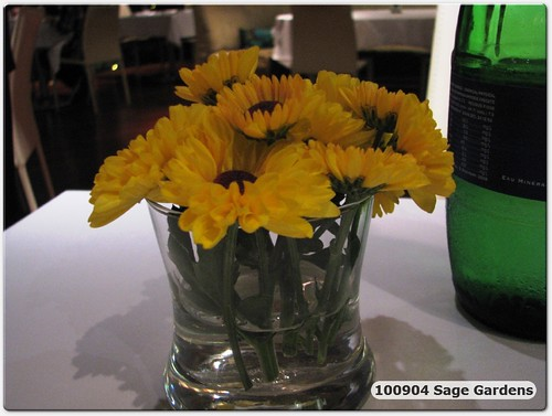 100904 WaiYan B'day Dinner @ Sage Gardens