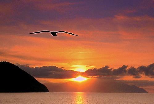 Sunrise in Agio Oros ! Ανατολή στο Άγιο Όρος