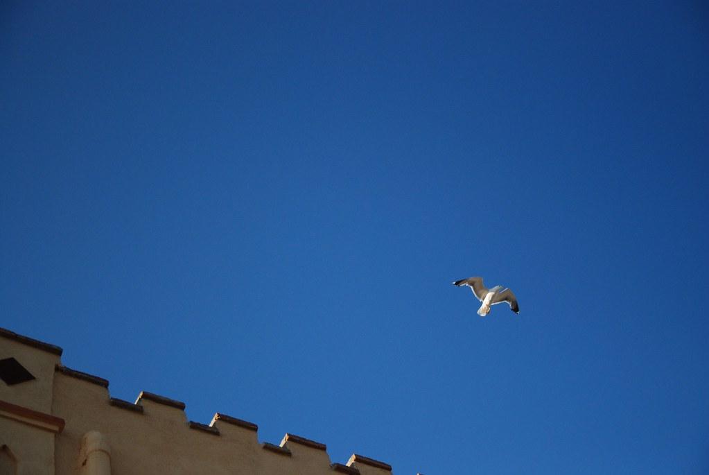 Cap de Creus (Girona)