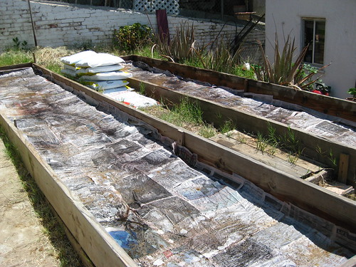 Garden 2: Newspaper layer