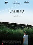 Canino poster película