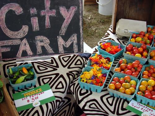 rainbows at City Farm