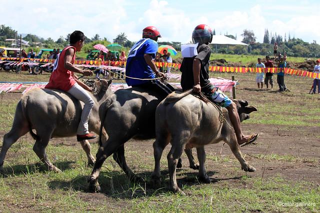 Pinyahan Festival 2010