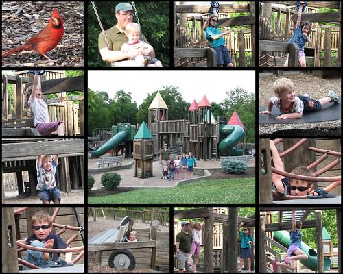 Cool Ohio Park Collage