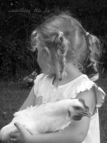 child and chicken