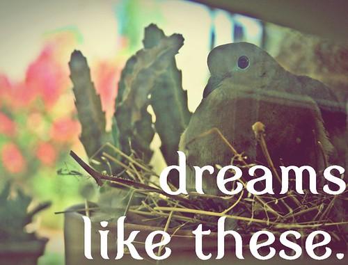 dreamslikethese