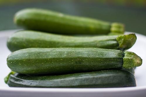 {186/365} zucchini