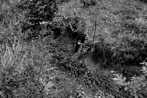 WW1 Trench System