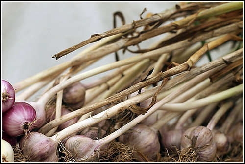 Onion order
