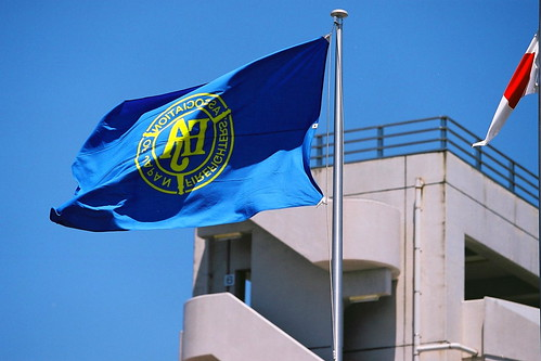 Association flag