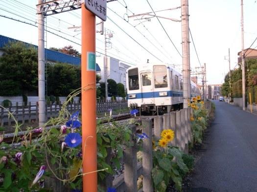 Photo 1 - 2010-08-26
