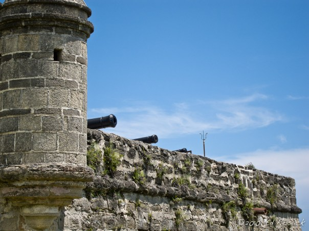 A view of the Fort Matanzas southern rampart