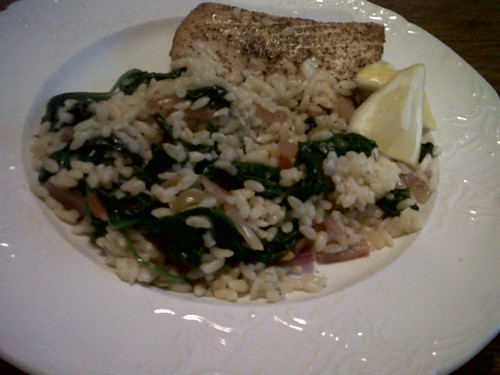 Mahi Mahi w/ Olives, Spinach and Orzo