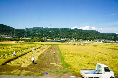 towards matsumoto