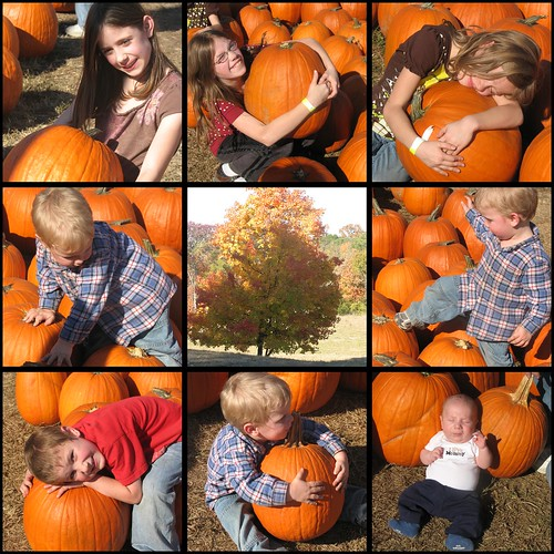 Pumpkin Fun 9