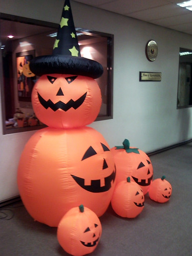 Pumpkins 2010-1028 001