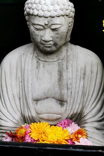 Buddha mum