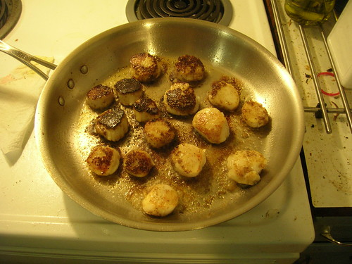 Half-seared scallops