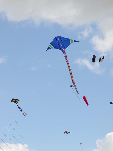 Eggerdon Hill Kite Festival 2010_11