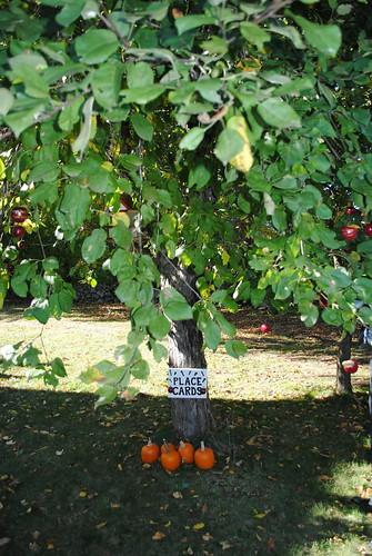 apple tree place card