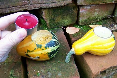 gourddrilling