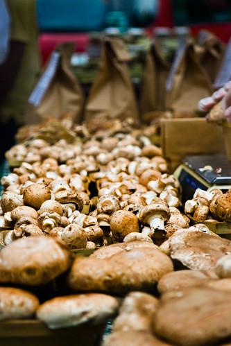 07-31-10 - farmers market mushrooms