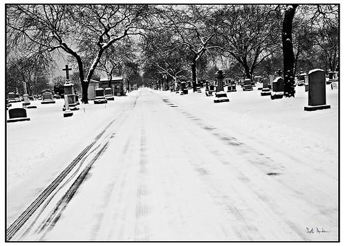 Long Silent Road Ahead - Agfa Scala