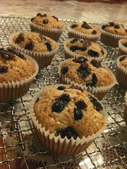 Whole wheat berry muffins