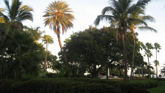 Aruba Park