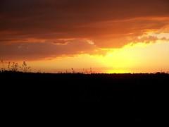 Golden hour:  Necedah Nat. Wildlife Refuge