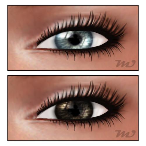Muism SBS Eyes