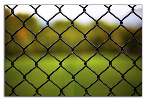Divided by the Fence