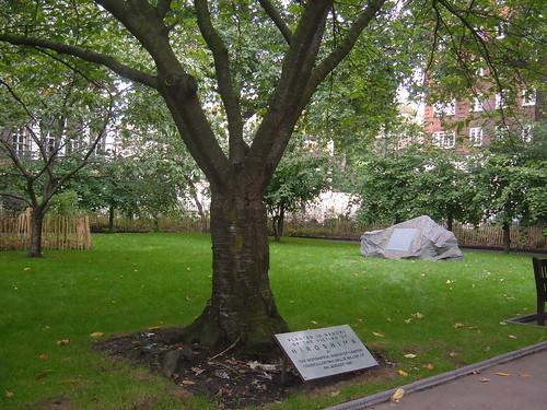 Tavistock Gardens