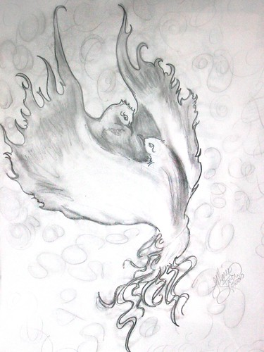 Phoenix-Sketches