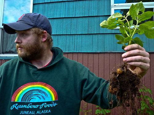 Matt with a potato plant