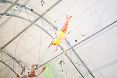 Big Bird on the Flying Trapeze
