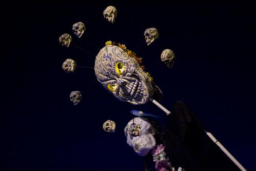 asp skull