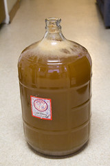 5 Gallons of Cider