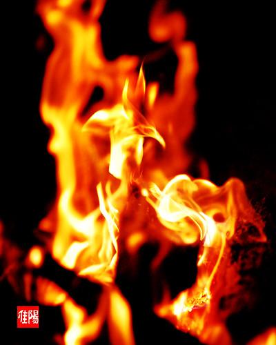 D80-CHI_Bonfire05-2010_09-25B