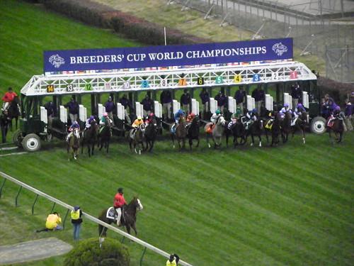 CD 11-5 Race 6