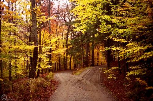 Road not taken - the beautiful way