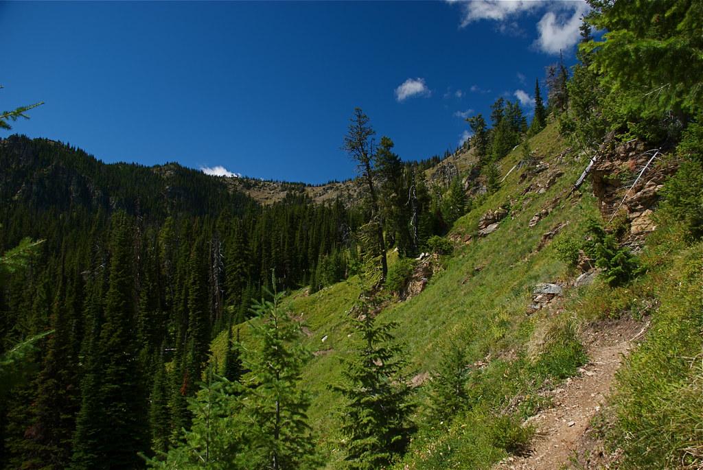 Mt Silcox and trail 478