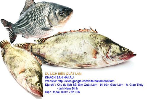 sea food (3)