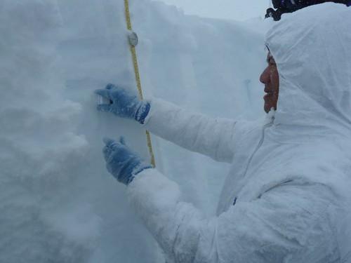 Gifford sampling snow for chemical analysis